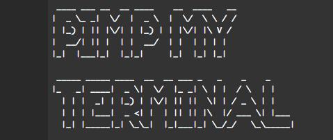 Pimp My Terminal | Frontend Mayhem